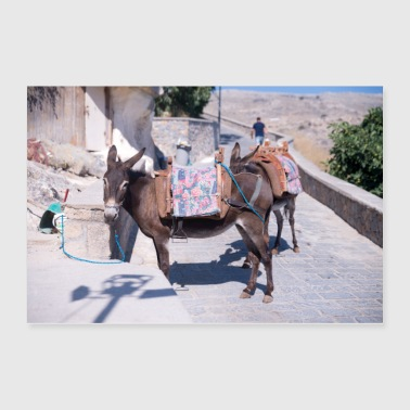 Greece Donkey Lindos Greece - Poster 36x24