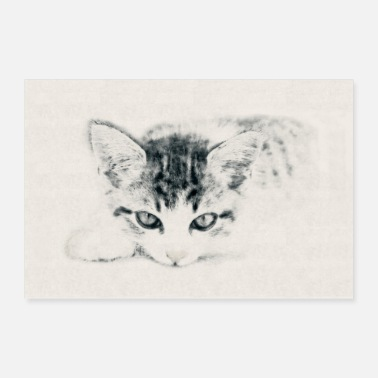 Cat Cat Cute Kitty Illustration Carcoal Pencil Drawing - Poster