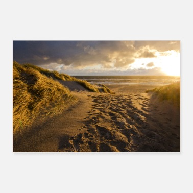 North Sea north sea beach with dunes, denmark - Poster