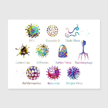 Diagram showing different kinds of viruses - Poster 24x18