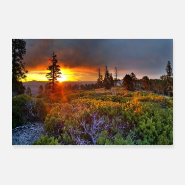 Norway Sunrise - Poster 12x8