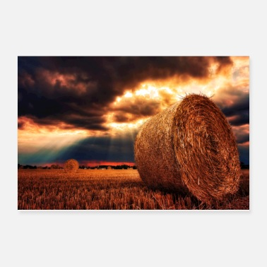 Agriculture Farmers Dreams - Poster 12x8