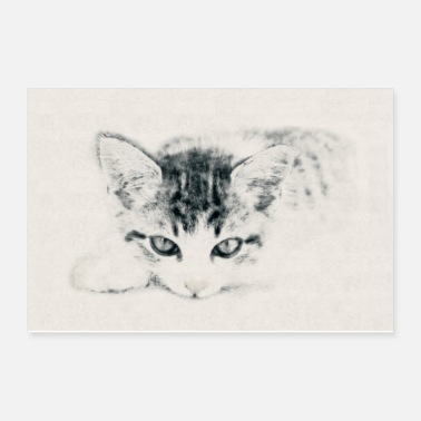 Cat Cat Cute Kitty Illustration Carcoal Pencil Drawing - Poster 12x8