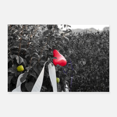 Ribbon red balloon heart on shrub - Poster