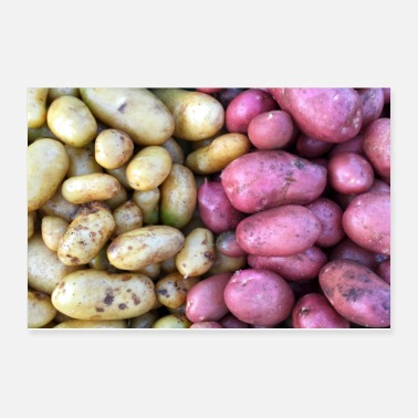 Color Colorful potatoes - Poster 12x8