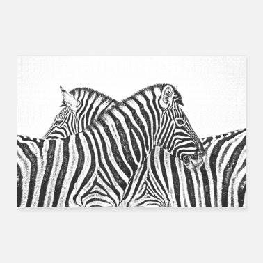 Hypnotic Zebra Drawing - Poster