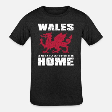 Home Country Wales Home Country - Kids' Tri-Blend T-Shirt