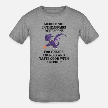Dragons Lair Funny Nerd Meddle Not In The Affairs Of Dragons - Kids' Tri-Blend T-Shirt