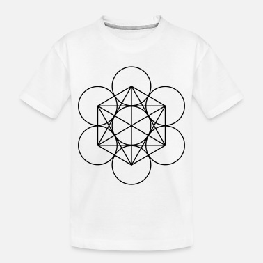 Matrix br-cube-matrix - Toddler Organic T-Shirt