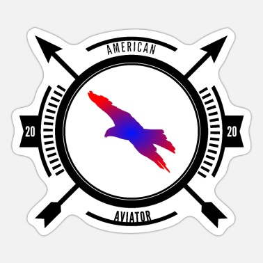 Kompass American Aviator USA colors - Sticker