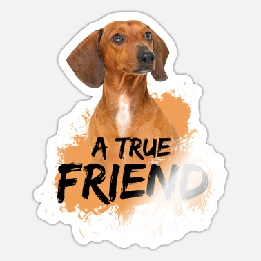 Dachshund Dackel Dackel Dachshund - A true Friend - Sticker