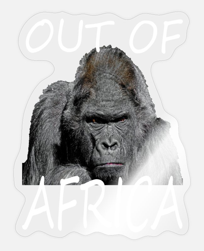 New York Stickers - GORILLA OUT OF AFRICA - Sticker transparent glossy