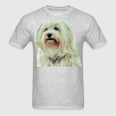 Havanese - Men's T-Shirt