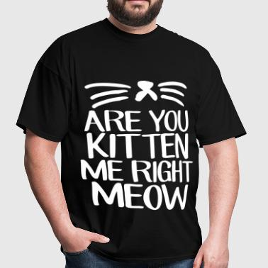 Are You Kitten Me Right Meow - Men's T-Shirt