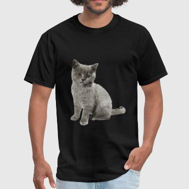 British Shorthair Cat - Men's T-Shirt