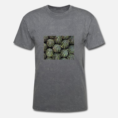 Octave watermelon1 - Men's T-Shirt