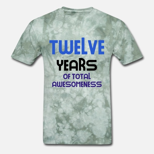 Mens T Shirttwelve Years Of Total Awesomeness Cute Birthday Gift Idea B Day Present
