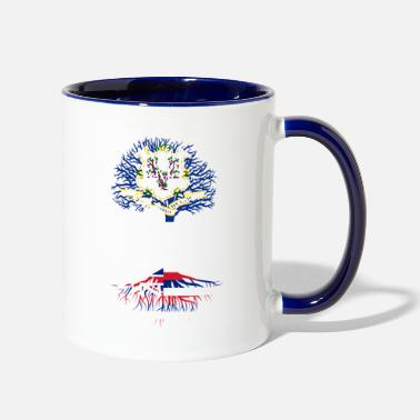 Living in Connecticut With Hawaii Roots - Two-Tone Mug