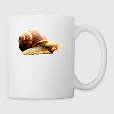 snail - Coffee/Tea Mug