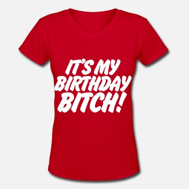 All I Want For My Birthday Is A Big Booty Hoe It's My Birthday Bitch - Women's V-Neck T-Shirt