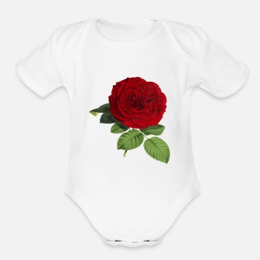 Blume Rose Blume - Organic Short-Sleeved Baby Bodysuit