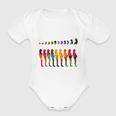 Pregnancy stages - Organic Short Sleeve Baby Bodysuit
