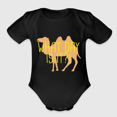 What day is it? - Organic Short Sleeve Baby Bodysuit