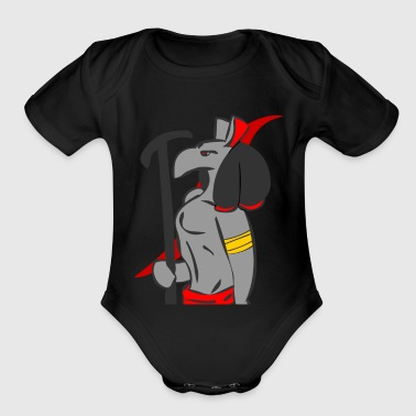Set set - Organic Short Sleeve Baby Bodysuit