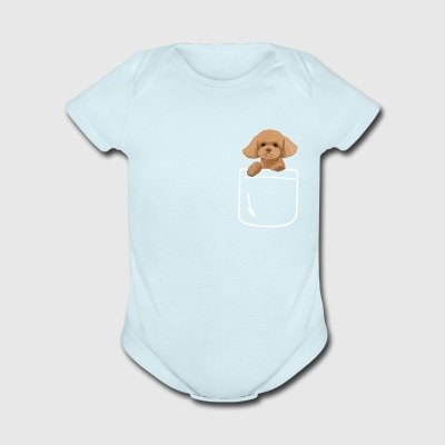 Toy Poodle Dog In Your Pocket Cute Puppy - Short Sleeve Baby Bodysuit