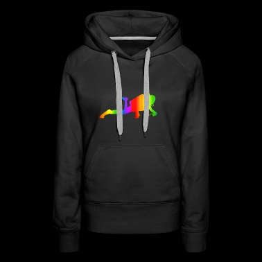 Colorful Diving Rainbow - Women's Premium Hoodie