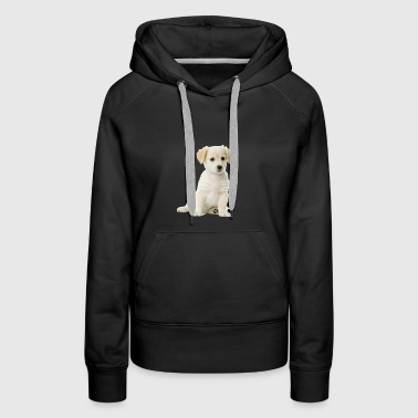 puppy package1 - Women's Premium Hoodie