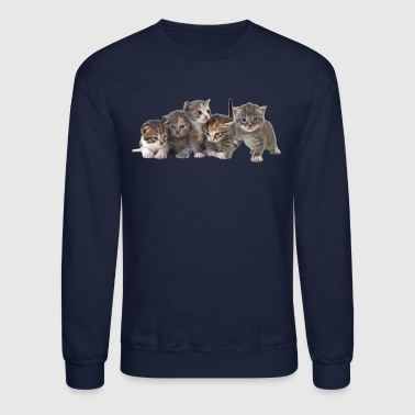 5 KITTENS - Crewneck Sweatshirt