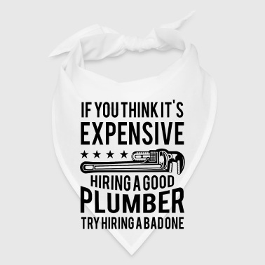 Expensive hiring good plumber try hiring a bad one - Bandana