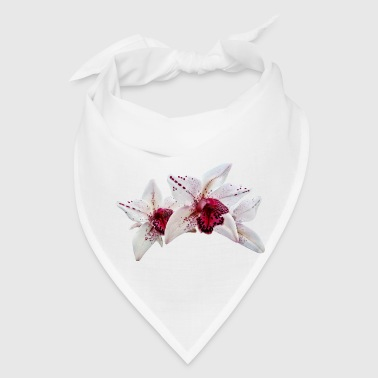 Cymbidium Baltic Dew Freckle Face - Bandana