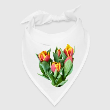 Tulips Just Opening - Bandana