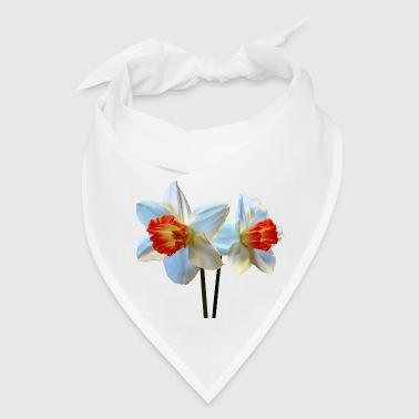 Two White And Orange Daffodils - Bandana