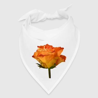 Single Orange Rose - Bandana