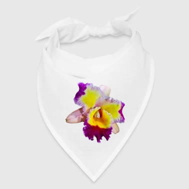 Yellow And Magenta Cattleya Orchid - Bandana