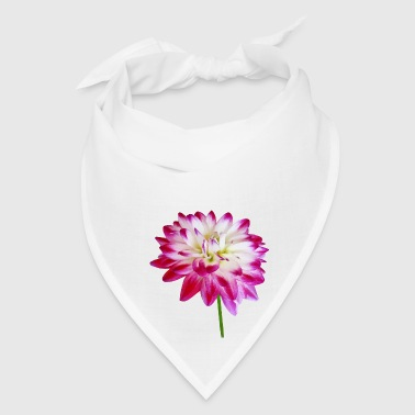 Dahlia Edged in Pink - Bandana