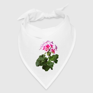Red And Pink Geranium - Bandana