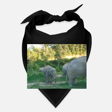 Uni Beautiful Close Up Photo of Asian Elephant - Uni - Bandana