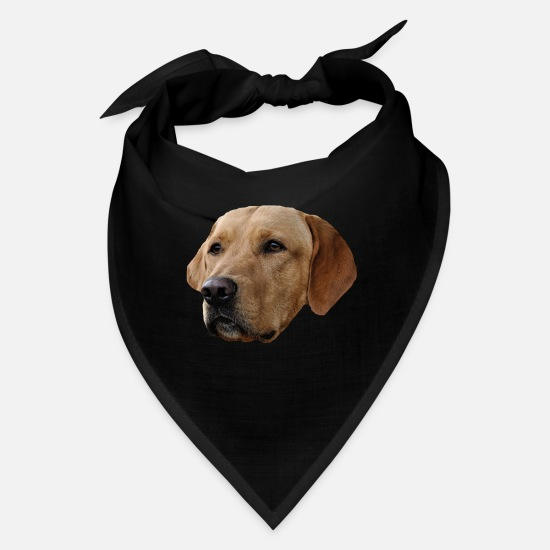Dog Owner Caps - Dog,dog head,dog face,dog breed,dog sport,dog love - Bandana black