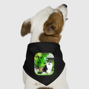 Black and White Cat by Flowers - Dog Bandana