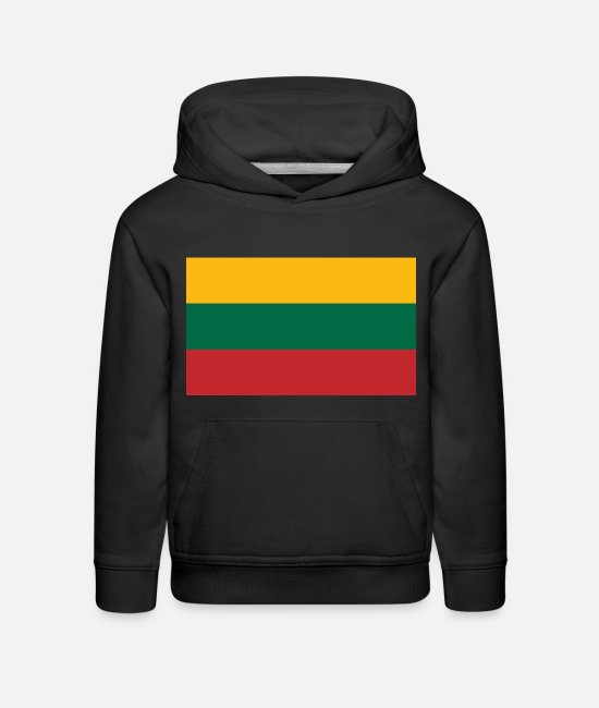 National Hoodies & Sweatshirts - Lithuania country flag love my land patriot - Kids' Premium Hoodie black