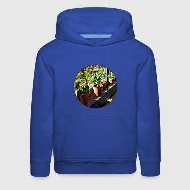 Jade Plants in Greenhouse - Kids' Premium Hoodie