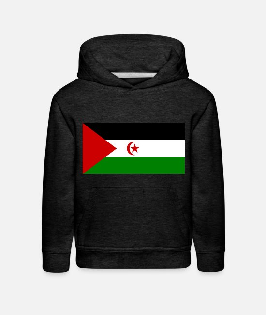 National Hoodies & Sweatshirts - Arabic States country flag love my land patriot - Kids' Premium Hoodie charcoal gray