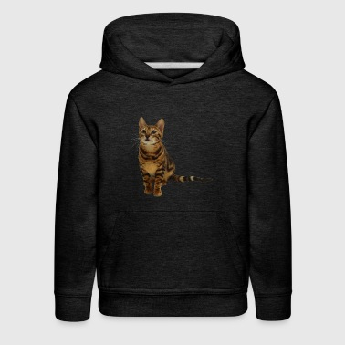 PRETTY KITTY SITTING - Kids' Premium Hoodie