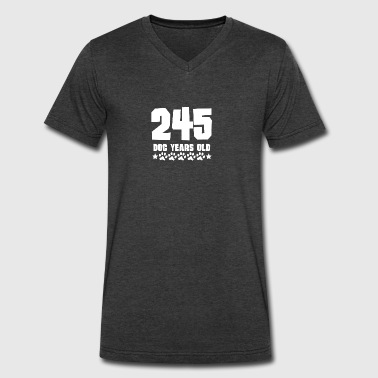 245 Dog Years Old Funny 35th Birthday - Men's V-Neck T-Shirt by Canvas