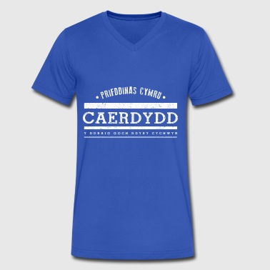 Cardiff - Men's V-Neck T-Shirt by Canvas