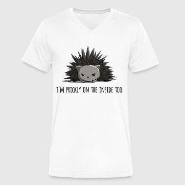 Prickly on the Inside - Men's V-Neck T-Shirt by Canvas